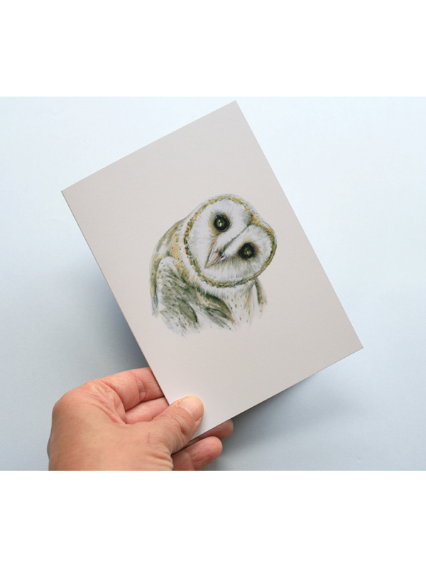 Greeting card, A5 folded to A6, with wildlife illustration of a barn owl.