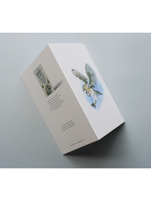 Greeting card, A5 folded to A6, with wildlife illustration of a barn owl_sides).