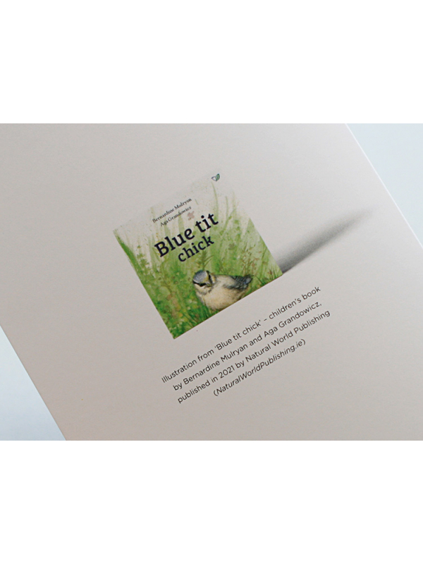 A6 CARD –feeding blue tit chick –back.