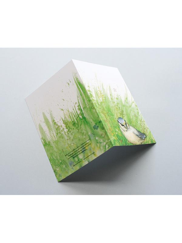 A6 CARD –blue tit chick – open.