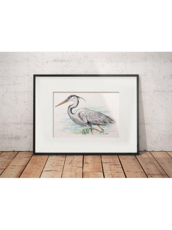 Great blue heron #2 – original artwork by Aga Grandowicz.