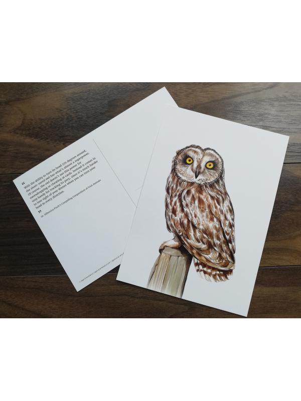 CARD A5 – Short-eared owl – Wildlife illustration by Aga Grandowicz