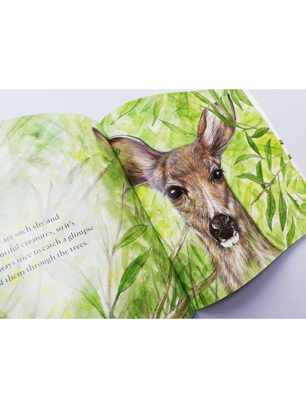 Blue tit chick – children's book by Bernardine Mulryan and Aga Grandowicz_s3