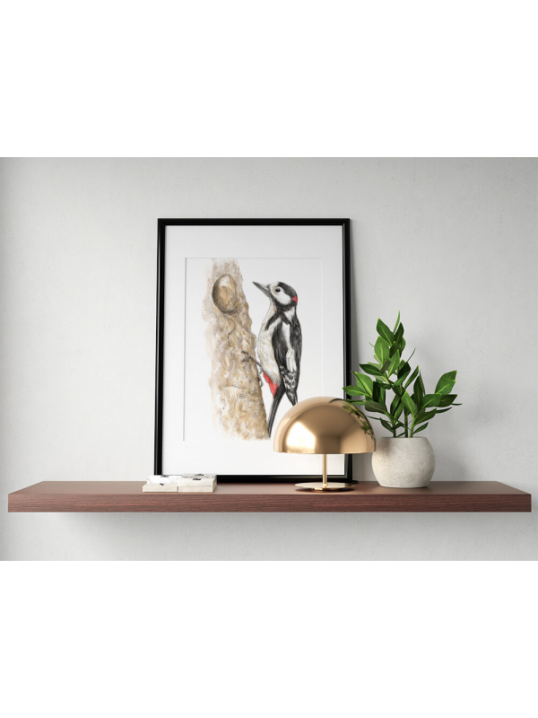 Great spotted woodpecker –original artwork by Aga Grandowicz
