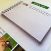 Wildlife letters for children by Aga Grandowicz   Happy Wildlife Post