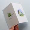 A6 CARD –feeding blue tit chick – open.