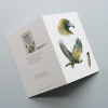 Greeting card, A5 folded to A6, with wildlife illustration of a golden eagle 1