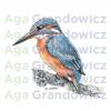 Kingfisher #1 – original artwork by Aga Grandowicz –close-up