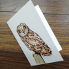 short-eared-owl-artwork-greeting-card-by-aga-grandowicz1