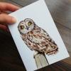 Short-eared-owl-artwork-greeting-card-by-aga-grandowicz_2