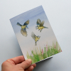 A6 CARD –three blue tits – illustration from 'Blue tit chick' –children's book