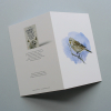 Greeting card, A5 folded to A6, with wildlife illustration of a twite bird_2