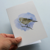 Greeting card, A5 folded to A6, with wildlife illustration of a twite bird.