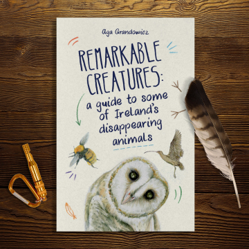 Remarkable Creatures: a guide to some of Ireland's disappearing animals - cover
