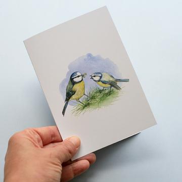 A6 CARD –feeding blue tit chick.