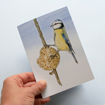 A6 CARD –feeding blue tit – illustration from 'Blue tit chick'