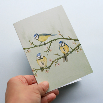 A6 CARD –blue tits sitting on a tree branch_front.