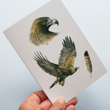 Greeting card, A5 folded to A6, with wildlife illustration of a golden eagle.