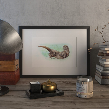 Eurasian otter – original artwork by Aga Grandowicz.