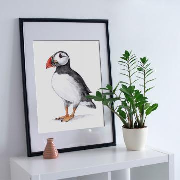 Atlantic Puffin – A4 fine art prints, limited edition for each by Aga Grandowicz