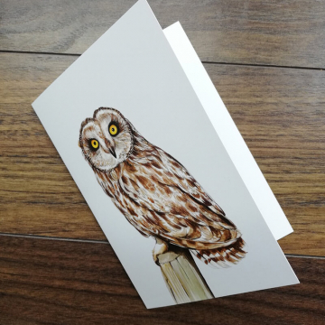 short-eared-owl-artwork-greeting-card-by-aga-grandowicz1