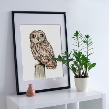 Short-eared owl – A4 fine art prints, limited edition for eachby Aga Grandowicz