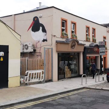 Mural in Dun Laoghaire