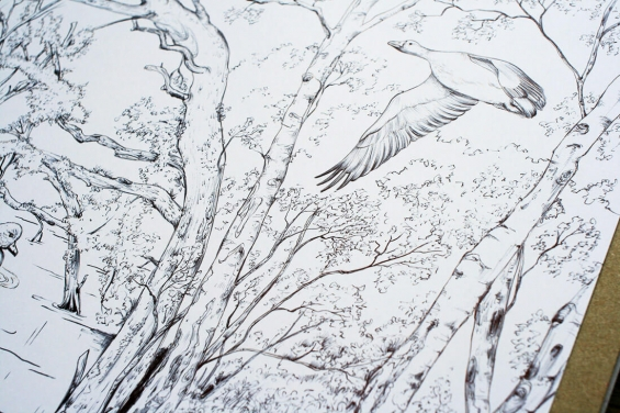 Trees and birds drawings by Aga Grandowicz
