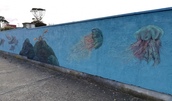 mural_in_greystones_jellyfish_by_aga-grandowicz.jpg