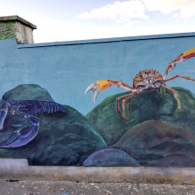 mural_in_greystones_4_by_aga-grandowicz.jpg