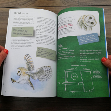 Remarkable Creatures: a guide to some of Ireland's disappearing animals, book by Aga Grandowicz_1