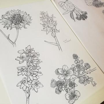 Tullamore D.E.W Honey_Bohemian plants_label illustration by Aga Grandowicz