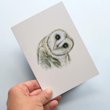 A6 CARD – Barn owl