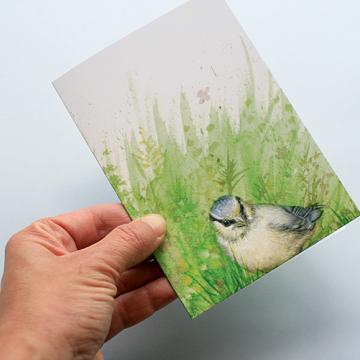 A6 CARD –blue tit chick