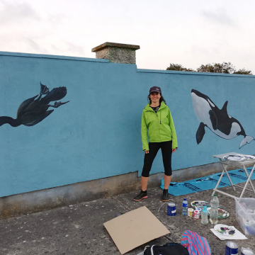 mural_in_greystones_orca_and_cormorant_by_aga-grandowicz.jpg