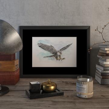 Peregrine falcon #3 – original artwork