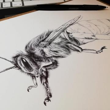 queen-bee1_by_aga-grandowicz.jpg