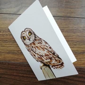 A6 CARD – Short-eared owl