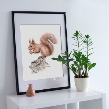Squirrel, A4 fine art prints by Aga Grandowicz, unlimited edition