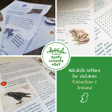 3 wildlife letters for children – COLLECTION 1 – Ireland