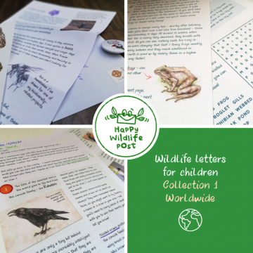 3 wildlife letters for children – COLLECTION 1 – Worldwide