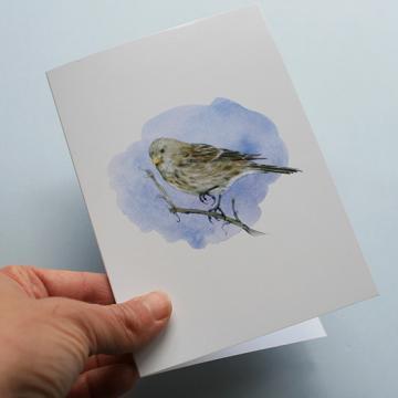 A6 CARD – Twite